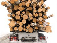 Финляндии снова нужен российский лес