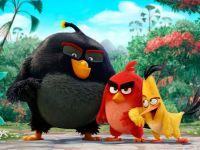 Английский язык с «Сердитыми птицами»
