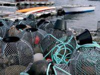 Норвегия перейдет на био-рыбацкие сети