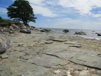 Шведским островам грозит дефицит питьевой воды