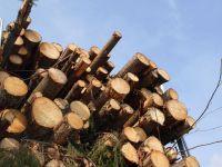 Финляндия: евросоюзные миллионы для китайской компании под финский проект