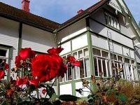 Финляндия: дом-музей президента Свинхувуда – туристический хит этого лета