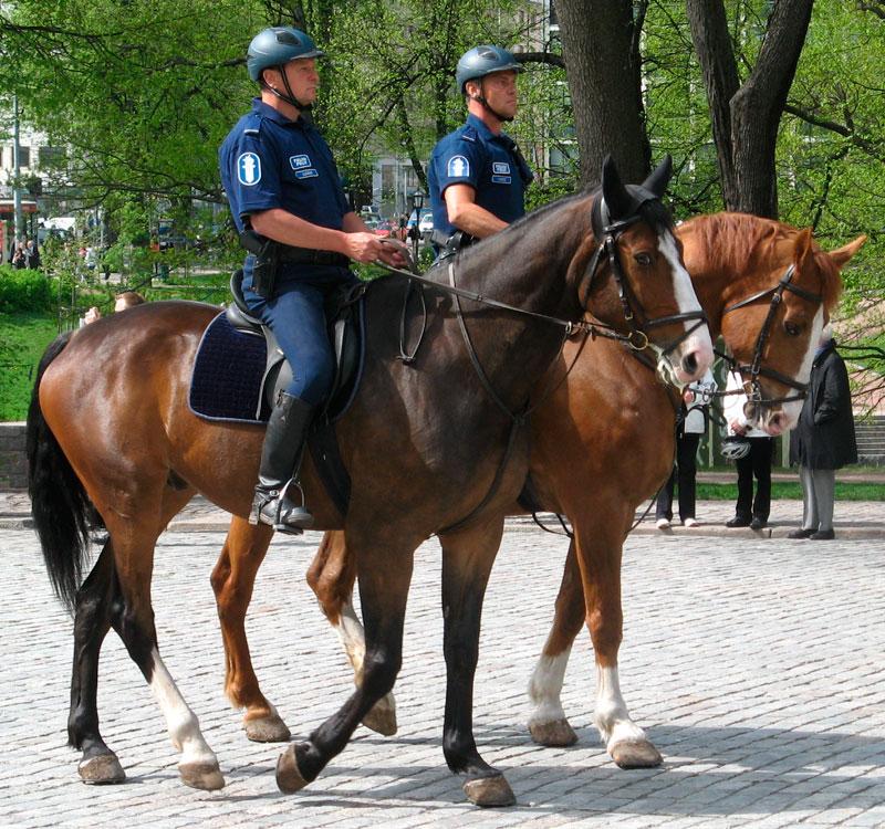 В Финляндии удвоился размер штрафов за административные правонарушения