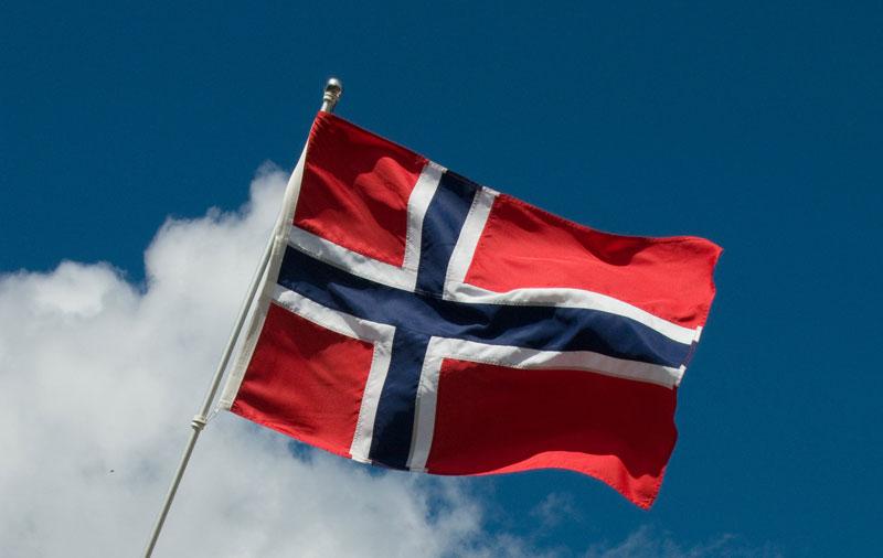 Шенгенскую визу в Норвегию – за три дня