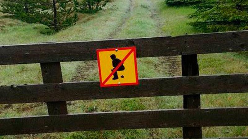 Исландия: «Мои кустики – не общественный туалет!»