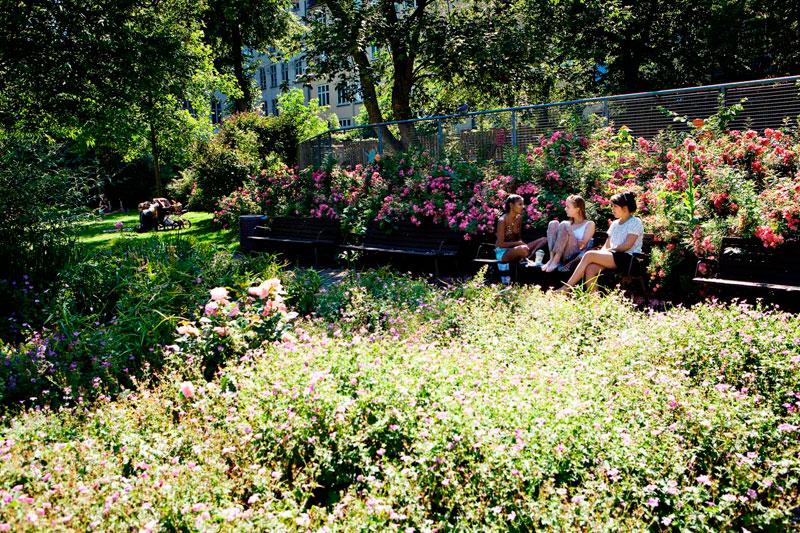 Дания: Копенгаген хочет стать самым зеленым городом Скандинавии