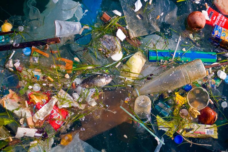 ЕС: под запрет самые популярные одноразовые пластиковые изделия
