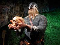 В Норвегии открывают школу викингов