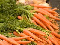 Дания намерена перевести сельское хозяйство на выпуск экологически чистой продукции