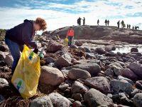 Самый загрязненный участок побережья Швеции назван