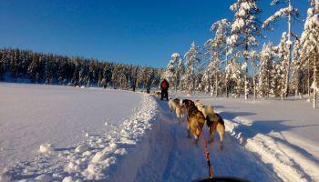 Финляндия: Лапландия бьет все рекорды по популярности