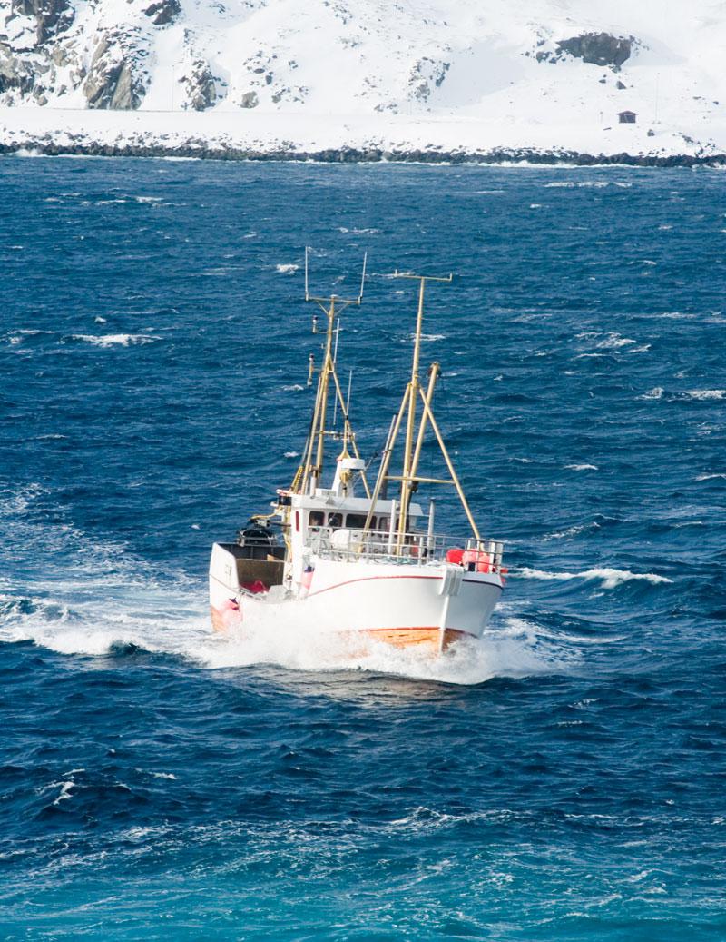 Исландские рыболовы приготовились к серьезным убыткам из-за российского эмбарго