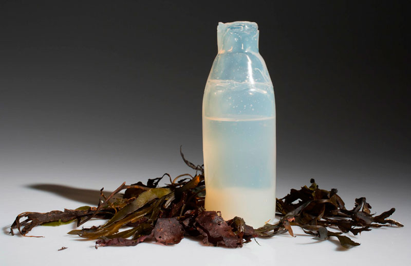 Проблема пластиковых бутылок решена?