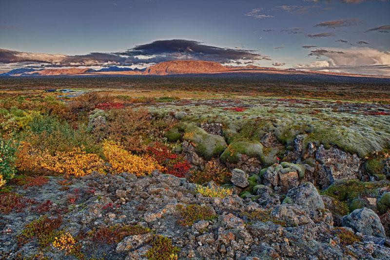 Исландия: россияне довольны больше всех