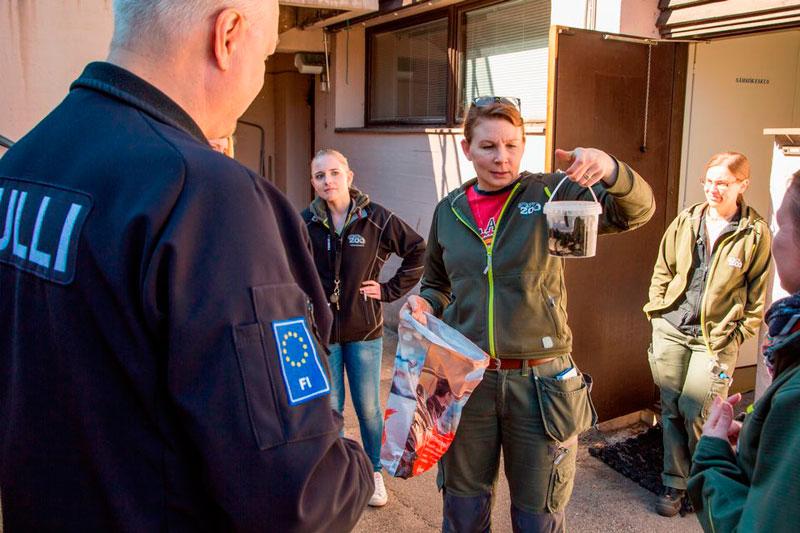 Финляндия: российских пиявок приютили в финских зоопарках